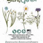 Aran_Cucine_Plantable_Paper