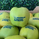 Fruit_with_edible_Logo