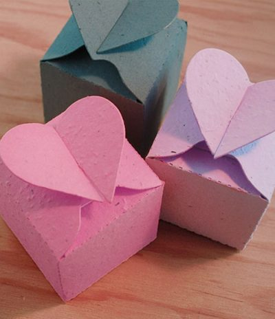 Closed Heart Plantable Box for Wedding Favors