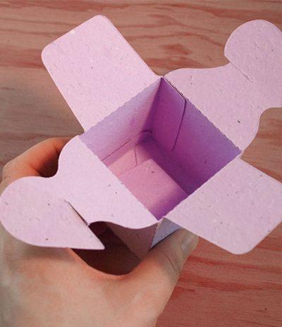 Open Heart Plantable Box for Wedding Favors