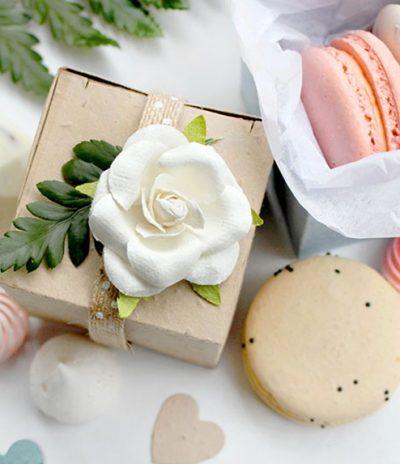 Square Plantable box for Wedding Favors