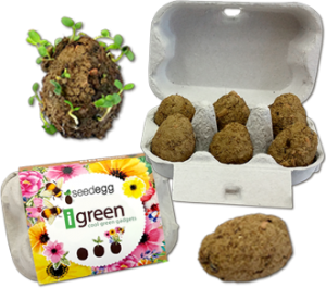 Seedegg-plantable seed bombs